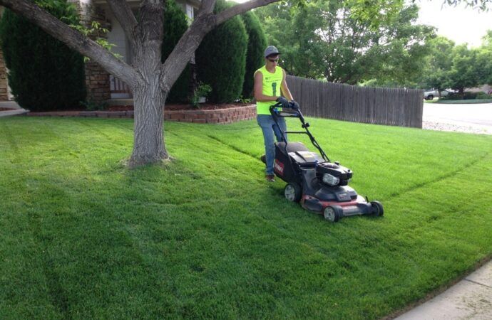 Lawn Service-Sugar Land TX Landscape Designs & Outdoor Living Areas-We offer Landscape Design, Outdoor Patios & Pergolas, Outdoor Living Spaces, Stonescapes, Residential & Commercial Landscaping, Irrigation Installation & Repairs, Drainage Systems, Landscape Lighting, Outdoor Living Spaces, Tree Service, Lawn Service, and more.